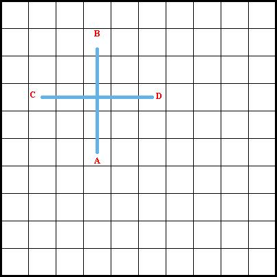 Double Straight Cross Stitch Diagram 1